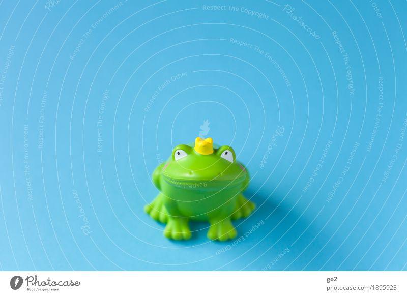 Sei kein Frosch Spielzeug Dekoration & Verzierung Kitsch Krimskrams Krone Zeichen Küssen Fröhlichkeit lustig blau grün Frühlingsgefühle Vorfreude Zusammensein