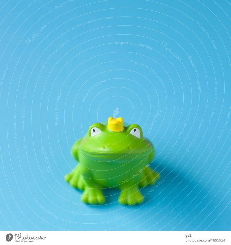 Froschkönig Spielzeug Dekoration & Verzierung Kitsch Krimskrams Krone Zeichen Küssen Fröhlichkeit lustig blau grün Frühlingsgefühle Vorfreude Zusammensein Liebe