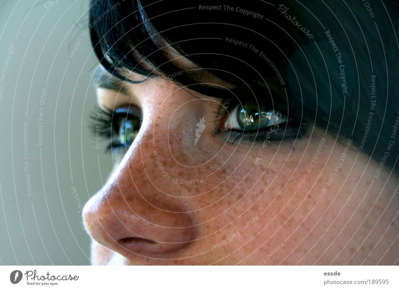jade feminin Junge Frau Jugendliche Haut Gesicht Auge Nase 18-30 Jahre Erwachsene schwarzhaarig beobachten Denken leuchten Blick träumen außergewöhnlich