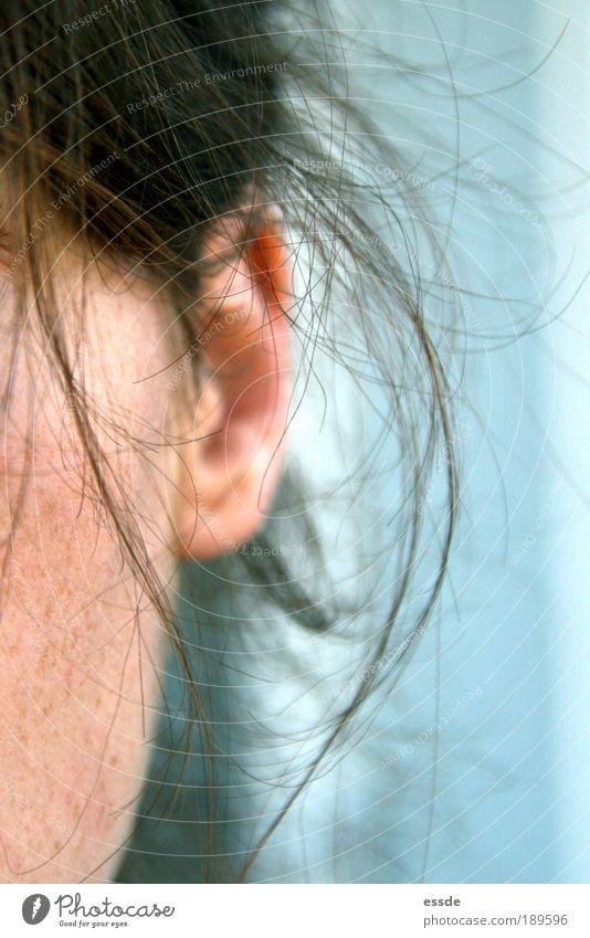 hörsinn blau ruhig feminin Bewegung Freiheit Haare & Frisuren Denken warten Haut rosa Mensch Ohr nah authentisch einfach