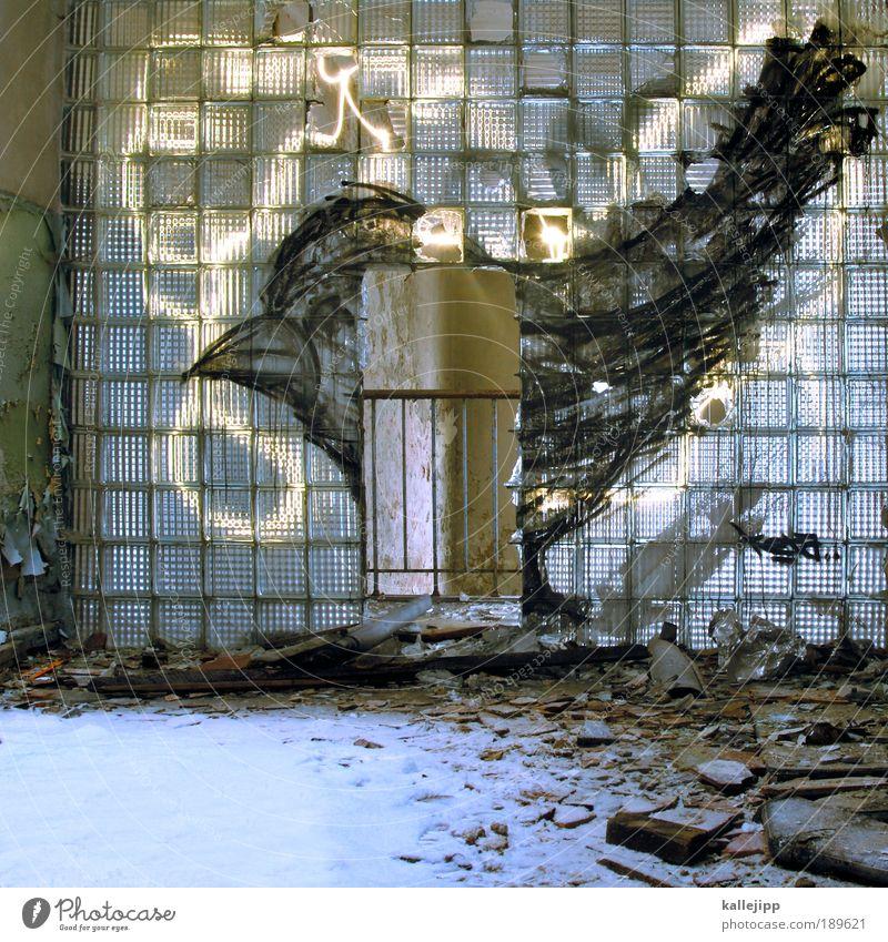 bei dir piepts wohl Kunst Künstler Maler Ausstellung Museum Kunstwerk Gemälde Kultur Jugendkultur Subkultur Ruine Mauer Wand Tür Tier Vogel 1 Zeichen Graffiti