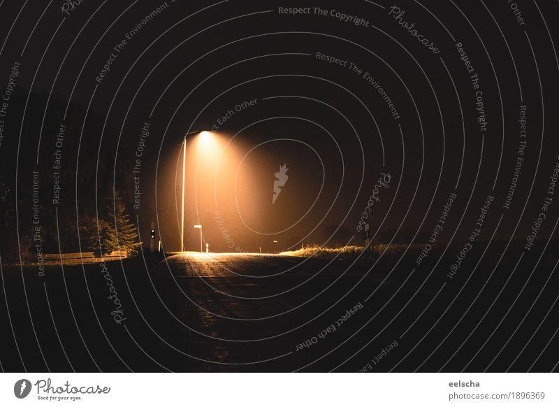 Light in the Dark dunkel schwarz Straße gelb Traurigkeit grau Deutschland orange hell Europa Straßenbeleuchtung Laterne Dorf gruselig Verkehrswege Autofahren