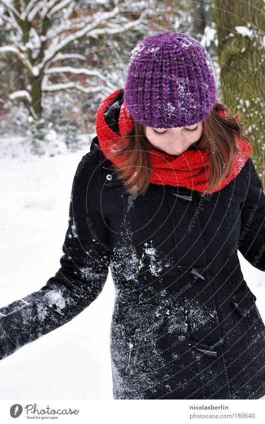 Pünktlich zum Jahrestag! Mensch Jugendliche schön rot Freude Winter Gesicht schwarz Wald Schnee feminin Glück Schneefall Paar Erwachsene