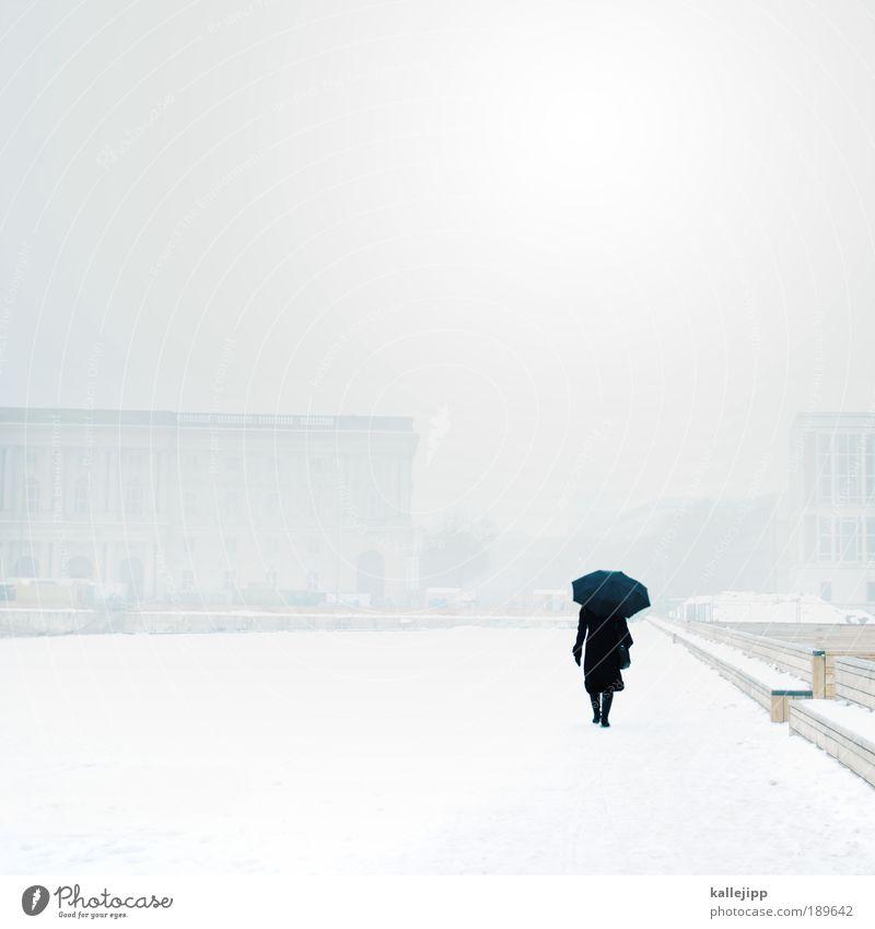 wetterfee Mensch Frau Erwachsene Rücken 1 Umwelt Wolken Winter Klima Wetter schlechtes Wetter Nebel Regen Eis Frost Schnee Park Stadt Hauptstadt Haus Verkehr