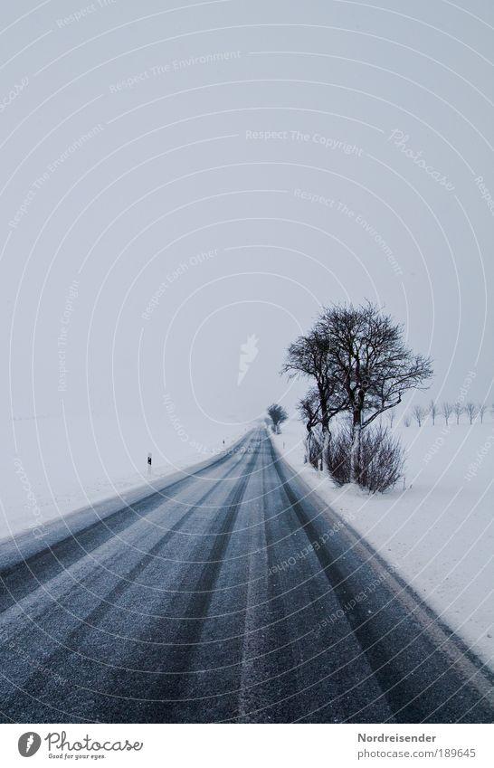 Winterblues Natur Baum Umwelt Landschaft dunkel Straße kalt Schnee Gefühle Wege & Pfade Traurigkeit Wetter Klima Verkehr Urelemente