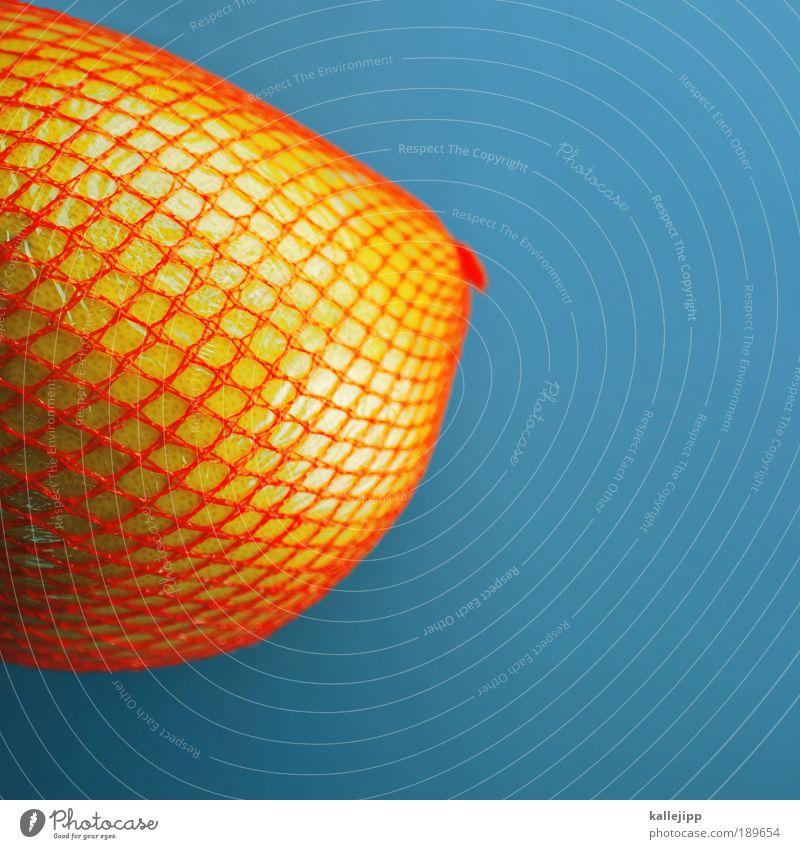 2800_dickes ding Lebensmittel Frucht Ernährung Bioprodukte Vegetarische Ernährung feminin Natur Netz Netzwerk Gesundheit Frauenbrust Pomelo Grapefruit orange