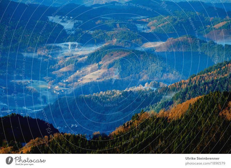 Höhenlage 2 Ferien & Urlaub & Reisen Tourismus Ausflug Winter Berge u. Gebirge wandern Umwelt Natur Landschaft Pflanze Schönes Wetter Eis Frost Baum Wald