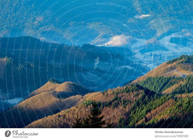 Höhenlage 3 Ferien & Urlaub & Reisen Tourismus Ausflug Winter Berge u. Gebirge wandern Umwelt Natur Landschaft Pflanze Schönes Wetter Eis Frost Baum Wald