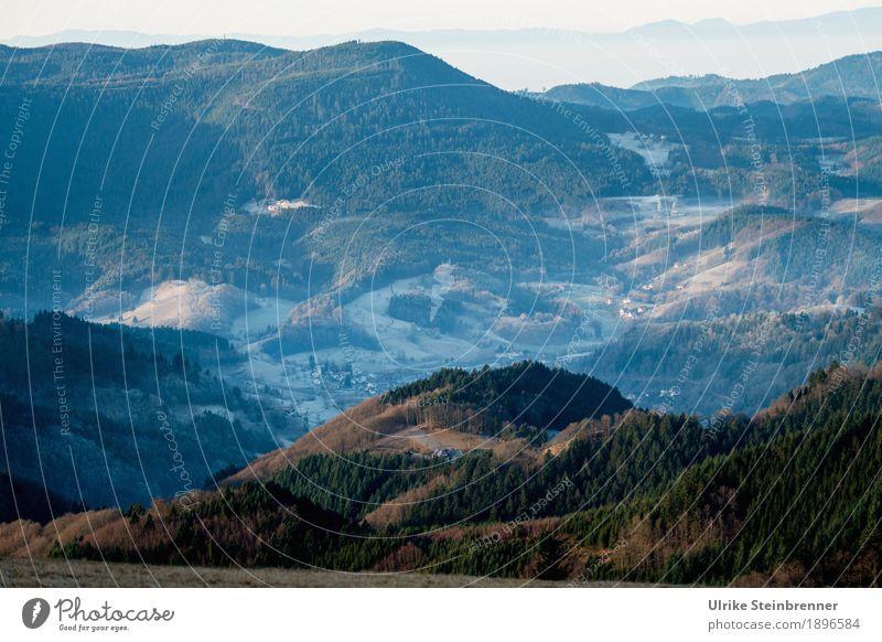 Höhenlage 4 Ferien & Urlaub & Reisen Tourismus Ausflug Winter Berge u. Gebirge wandern Umwelt Natur Landschaft Pflanze Schönes Wetter Eis Frost Baum Wald