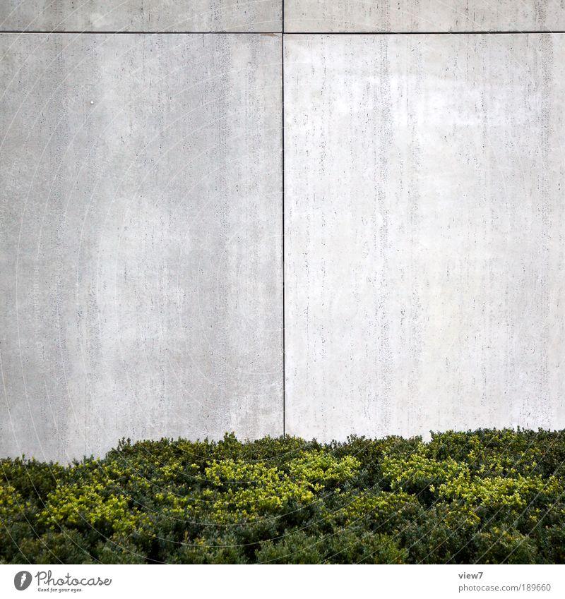 Sichtbeton. Haus Pflanze Sträucher Bankgebäude Industrieanlage Mauer Wand Fassade Stein Beton Linie Streifen ästhetisch dünn eckig einfach elegant schön modern