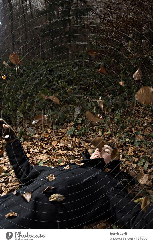 Waldportrait Mensch maskulin Junger Mann Jugendliche Erwachsene 1 18-30 Jahre liegen Blatt Spielen bezaubernd fliegen Farbfoto Gedeckte Farben Textfreiraum oben