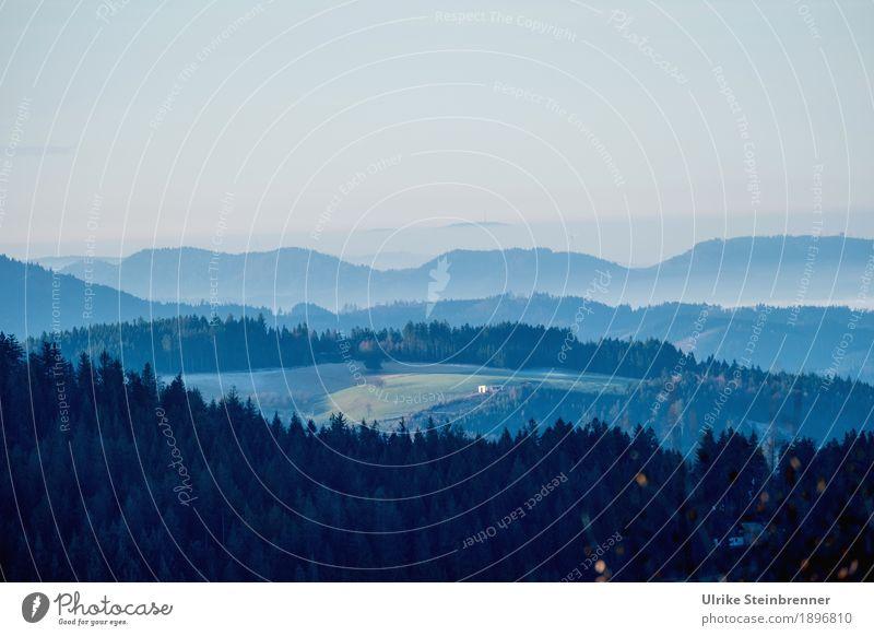 Muldenlage 4 Natur Ferien & Urlaub & Reisen Pflanze Baum Landschaft Erholung Einsamkeit Winter dunkel Wald Berge u. Gebirge Umwelt kalt Wiese natürlich