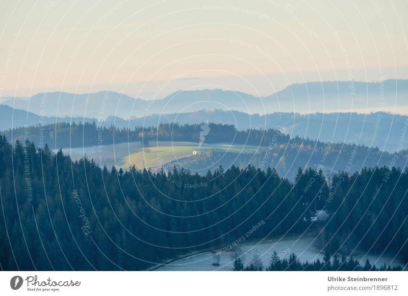 Muldenlage 6 Ferien & Urlaub & Reisen Tourismus Ausflug Winter Berge u. Gebirge wandern Umwelt Natur Landschaft Pflanze Himmel Sonnenlicht Nebel Eis Frost Baum