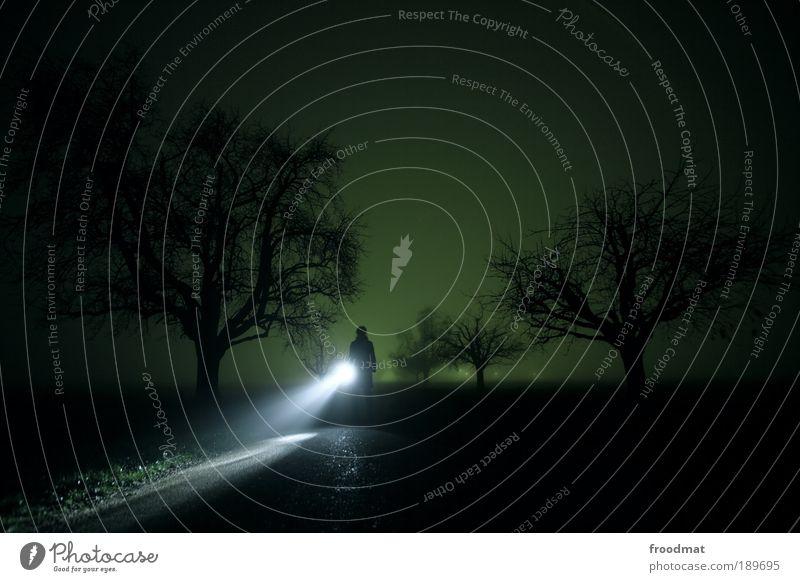 düsterwald Mensch Baum Einsamkeit Straße dunkel kalt Wege & Pfade Stimmung Stil Angst Nebel Suche Langzeitbelichtung gefährlich bedrohlich Schutz