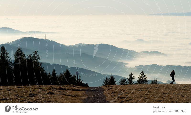 Kandel Mensch feminin Frau Erwachsene 30-45 Jahre Landschaft Himmel Horizont Herbst Winter Schönes Wetter Nebel Baum Wiese Hügel Berge u. Gebirge wandern blau
