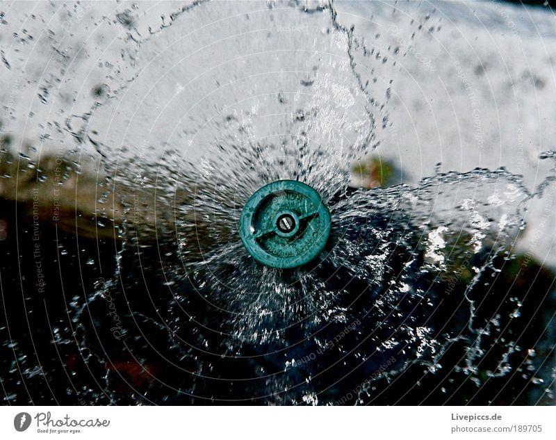Sprinkleranlage Wasser Bewegung Wassertropfen nass Flüssigkeit