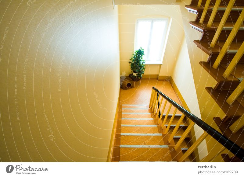 Treppenhaus Sonne Sommer Haus hell Glas Niveau aufwärts steigen Schönes Wetter Geländer Fensterscheibe Karriere abwärts Scheibe