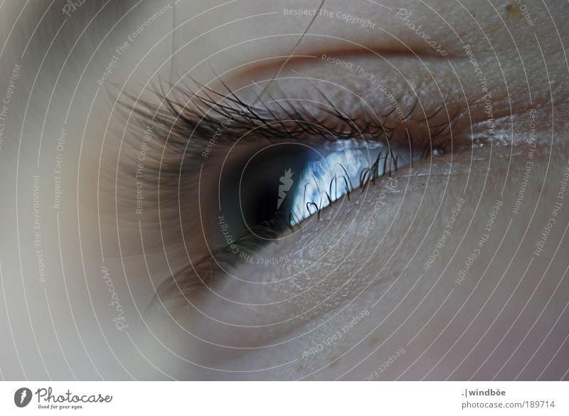 Wimpernschlag Mann Jugendliche alt weiß Gesicht ruhig Auge schwarz Leben Erholung Bewegung Kopf Denken Erwachsene Haut