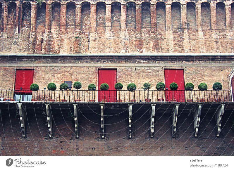 Mädchen-Ferrari Ferrara Italien Stadt Altstadt Traumhaus Burg oder Schloss Mauer Wand schön niedlich elegant herrschaftlich Baum Farbfoto Außenaufnahme