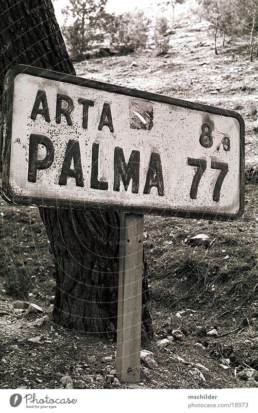 altes Schild mitten in Mallorca Schilder & Markierungen Europa Wegweiser