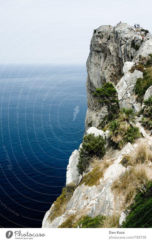 Touri on the Rocks Himmel Natur Wasser Baum Pflanze Sommer Freude Meer Tier Erholung Landschaft Gras Erde Insel Sicherheit Sträucher
