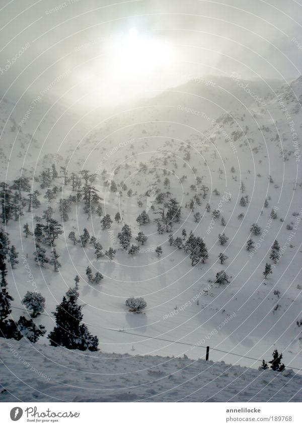 Erleuchtung Himmel Natur schön Baum Ferien & Urlaub & Reisen Sonne Winter Umwelt Landschaft kalt Schnee Berge u. Gebirge Eis Wetter Klima Ausflug