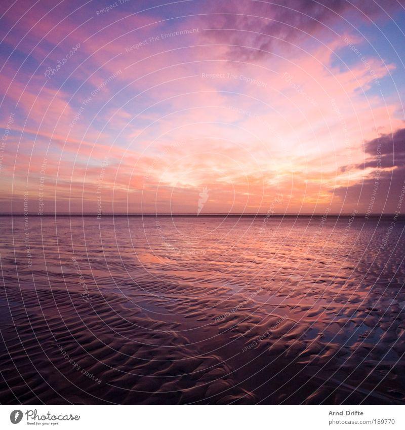 Watt Sonnenaufgang Natur blau rot Strand ruhig Wolken Ferne Sonnenuntergang Wege & Pfade Sand Landschaft Wellen Küste Sonne rosa