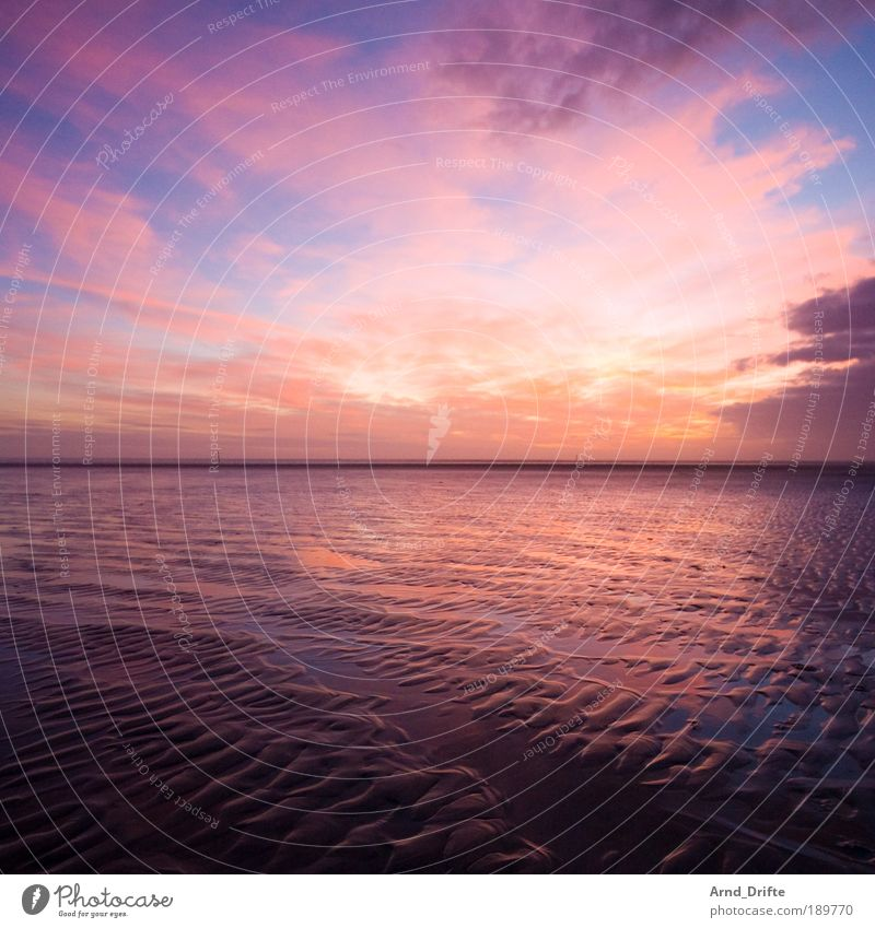 Watt Sonnenaufgang Natur blau rot Strand ruhig Wolken Ferne Sonnenuntergang Wege & Pfade Sand Landschaft Wellen Küste rosa