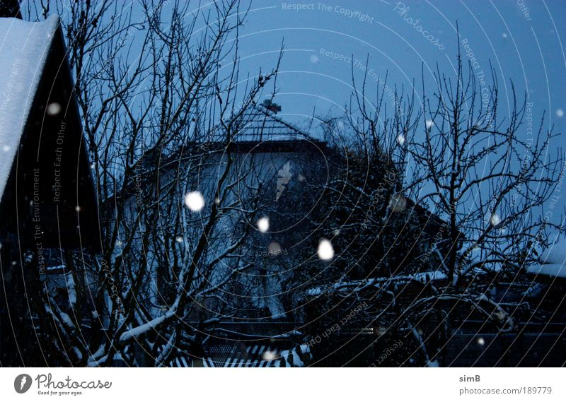 schneeflocken Baum Winter Haus Garten Schneefall Eis Stimmung Wetter Frost Dorf Österreich Schneeflocke