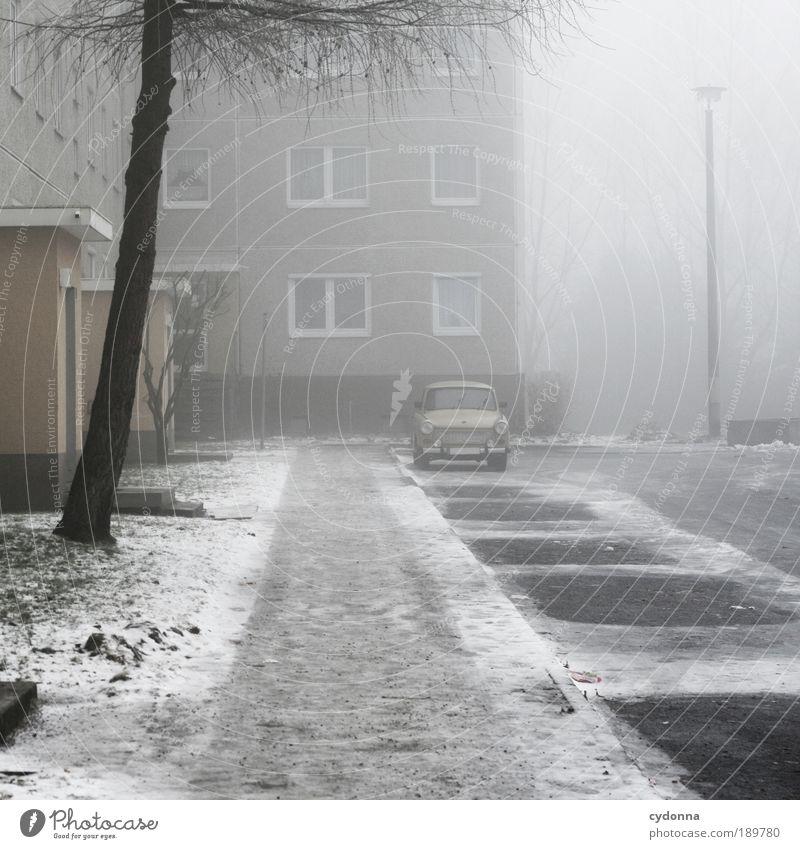 Der Letzte macht das Licht aus Häusliches Leben Umwelt Winter Wetter Nebel Eis Frost Schnee Baum Architektur Fassade Einsamkeit Endzeitstimmung Freiheit