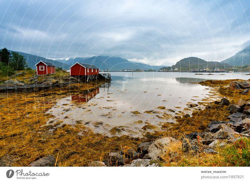 Norwegische Hütte Rorbu auf Buchtküste. Nordischer bewölkter Sommertag Ferien & Urlaub & Reisen Tourismus Ausflug Abenteuer Ferne Freiheit Sommerurlaub Meer