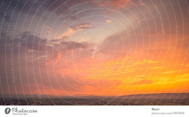 Sonnenuntergang an der Östereich/Ungarischengrenze Umwelt Landschaft Himmel Wolken Horizont Sonnenaufgang Sonnenlicht Sommer Schönes Wetter Pflanze Baum Gras