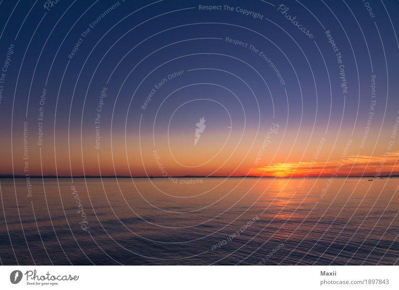 Sonnenuntergang am Bodensee Umwelt Landschaft Wasser Horizont Sonnenaufgang Sommer Schönes Wetter Küste Seeufer Unendlichkeit Wärme blau mehrfarbig gelb orange
