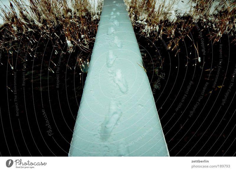 Mutprobe Schnee Schneefall Steg Spuren Schneespur Brücke Wasser See Küste Seeufer Flussufer Anlegestelle