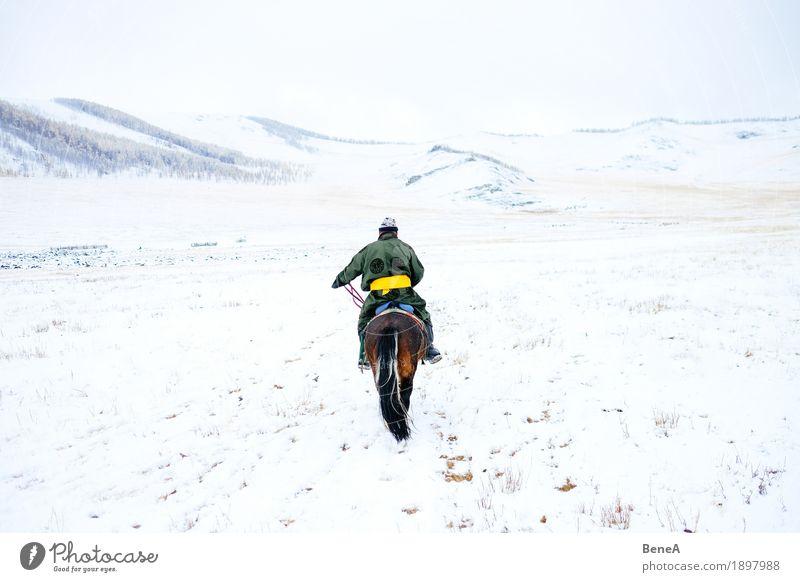 Mann mit Pferd in winterlicher Steppe mit Schnee, Mongolei Winter Abenteuer Einsamkeit entdecken Freiheit Mobilität Natur Ferien & Urlaub & Reisen Tradition