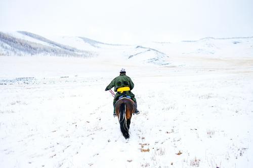 Mann mit Pferd in winterlicher Steppe mit Schnee, Mongolei Natur Ferien & Urlaub & Reisen Landschaft Einsamkeit Tier Winter Umwelt Bewegung Freiheit Kultur
