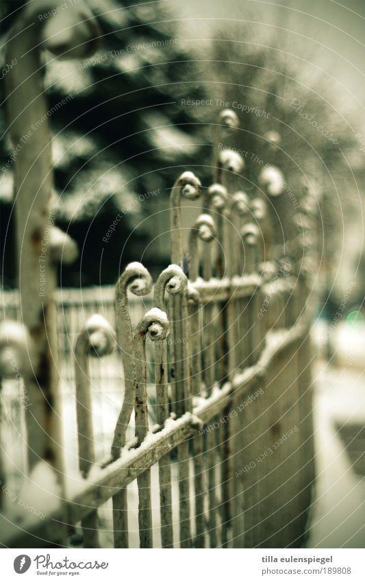 hält an Ausflug Weimar Deutschland Europa Menschenleer Gartenzaun alt trist kalt Vergänglichkeit Unschärfe ruhig Winter Zaun erobern Farbfoto Außenaufnahme