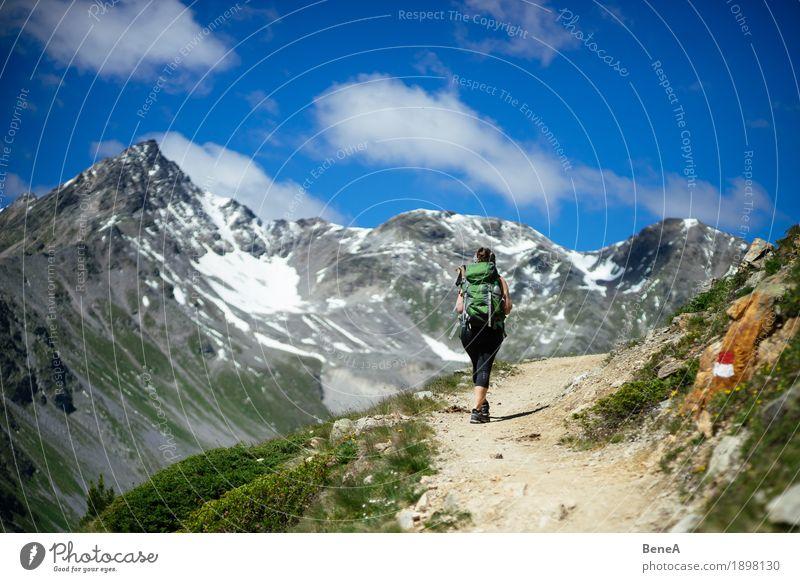 Frau mit Rucksack macht Bergwanderung im Vinschgau, Italien Sport Mensch Erwachsene Natur gehen wandern Erholung Freizeit & Hobby Ferien & Urlaub & Reisen alpin