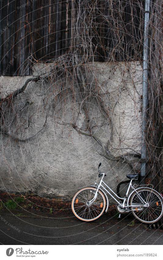 Abgestellt und angewachsen Pflanze Sträucher Dorf Haus Hütte Ruine Platz Bauwerk Gebäude Mauer Wand Fassade Dachrinne Verkehr Verkehrsmittel Verkehrswege