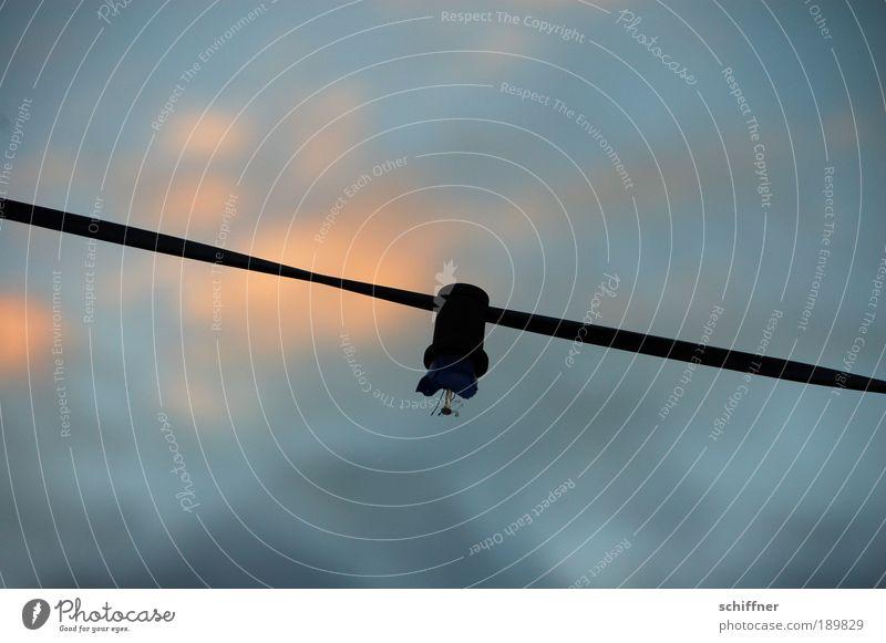 Auslaufmodell Einsamkeit dunkel Elektrizität kaputt Kabel Glühbirne Zerstörung zerbrechlich Erschöpfung sparsam Lichterkette Halterung Elektrisches Gerät Glühdraht Stromausfall Syndrom