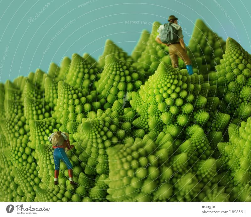 Miniwelten - Bergwelten Mensch Frau Ferien & Urlaub & Reisen Mann Pflanze grün Berge u. Gebirge Erwachsene feminin Lebensmittel maskulin Ausflug Ernährung