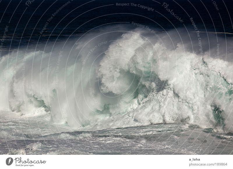 not for surfing Natur Wasser Meer Bewegung Küste Wellen Kraft hoch nass groß außergewöhnlich Geschwindigkeit Urelemente einzigartig Tropfen Flüssigkeit