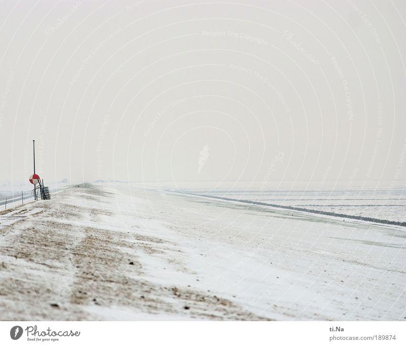 Meldorfer Bucht Tourismus Freiheit Winter Schnee Weltkulturerbe Umwelt Landschaft Pflanze Klima Eis Frost Ebbe Strand Nordsee Meer Unendlichkeit natürlich weiß