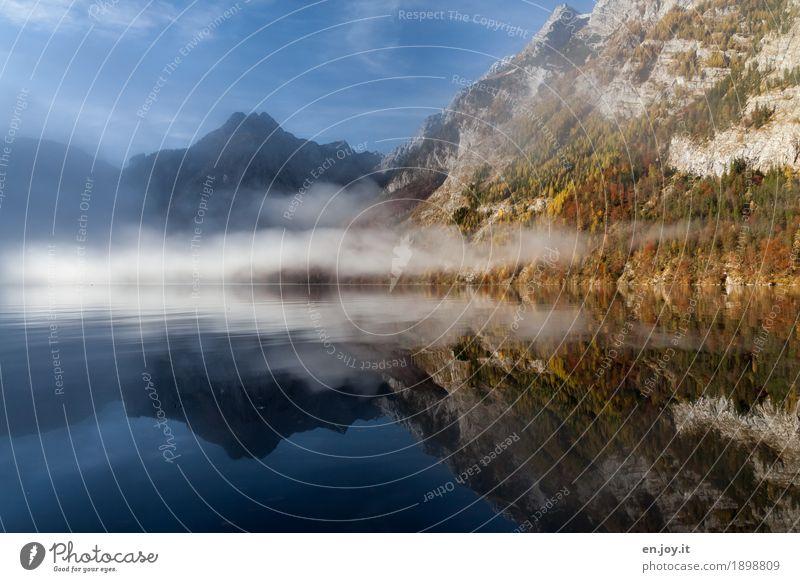 umhüllt Ferien & Urlaub & Reisen Ferne Natur Landschaft Himmel Herbst Nebel Berge u. Gebirge Watzmann Gipfel Seeufer Königssee blau Traurigkeit Trauer Sehnsucht