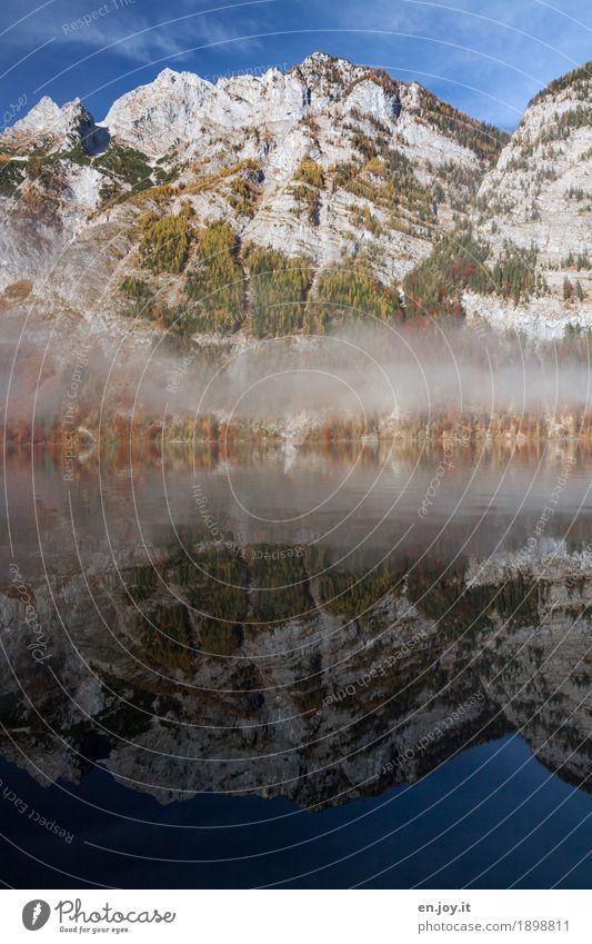 Morgennebel Abenteuer Berge u. Gebirge Natur Landschaft Urelemente Himmel Herbst Klima Nebel Felsen Gipfel Seeufer Königssee Bayern Deutschland Fernweh bizarr