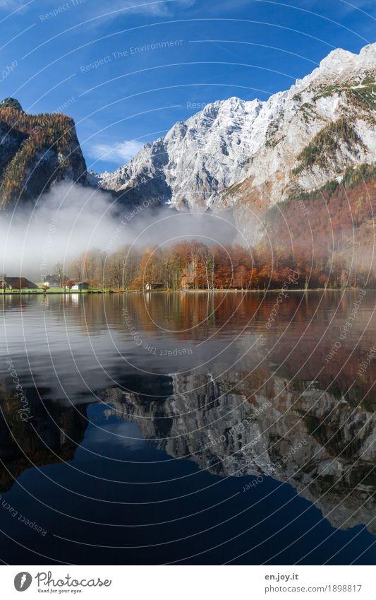 Symmetrie Ferien & Urlaub & Reisen Tourismus Ausflug Berge u. Gebirge Natur Landschaft Wolkenloser Himmel Herbst Nebel Wald Felsen Alpen Watzmann