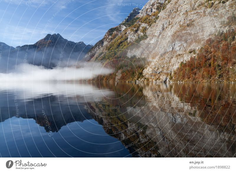 Unsichtbar Ferien & Urlaub & Reisen Tourismus Ausflug Ferne Berge u. Gebirge Natur Landschaft Wasser Himmel Herbst Nebel Felsen Berchtesgadener Alpen Seeufer