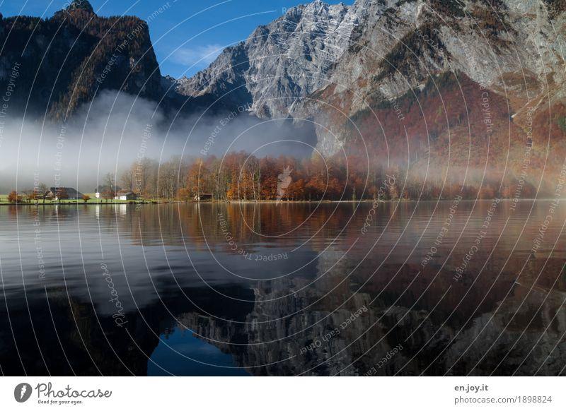 Königswetter Umwelt Natur Landschaft Herbst Nebel Felsen Alpen Berge u. Gebirge Berchtesgadener Alpen Watzmann Seeufer Königssee St. Bartholomä Bayern