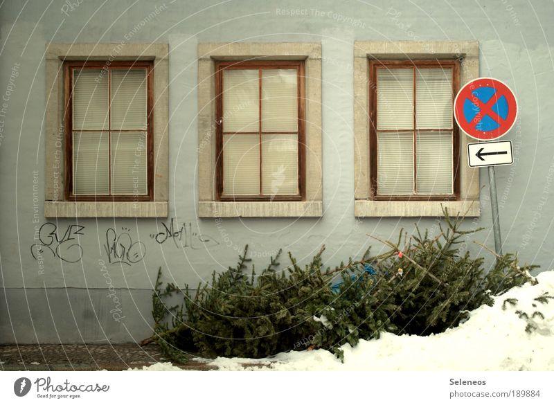Friedhof der Nadelbäume alt Baum Einsamkeit Haus Winter Fenster Umwelt Wand Straße Gefühle Graffiti Schnee Gebäude Mauer Raum Wetter