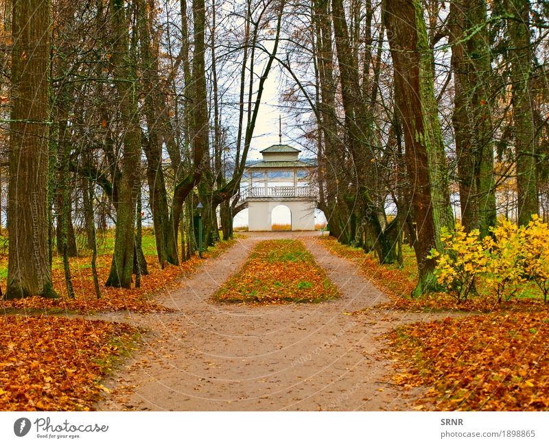 Herbst im Park Garten Umwelt Natur Landschaft Baum Blatt Wald natürlich gelb Gasse fallen November Oktober Pavillon Szene Jahreszeiten Gartenhaus Farbfoto